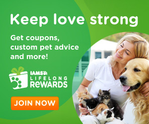 11890 Iams Banner 300x250 Get Expert Advice and Valuable Coupons For your Pet!