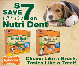 12105 WEBAd NTDC 300x250 Nutri Dent Coupons   Great Savings For Pet Parents