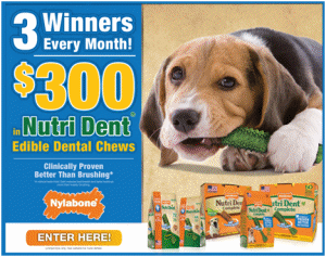 12679 Nylabone Sweeps Enter to Win $300 worth of NutriDent Products!
