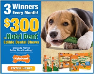 WIN $300 Worth of Nutri Dent Edible Chews for Your Pup!