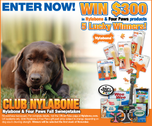 Nylabone Four Paws Fall Sweepstakes