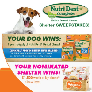 Nylabone Shelter Sweepstakes. Ends 9/30/15