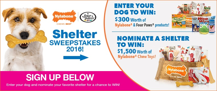 Ener the Nylabone and Four Paws Shelter Sweepstakes