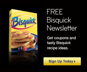 Bisquick Newsletter